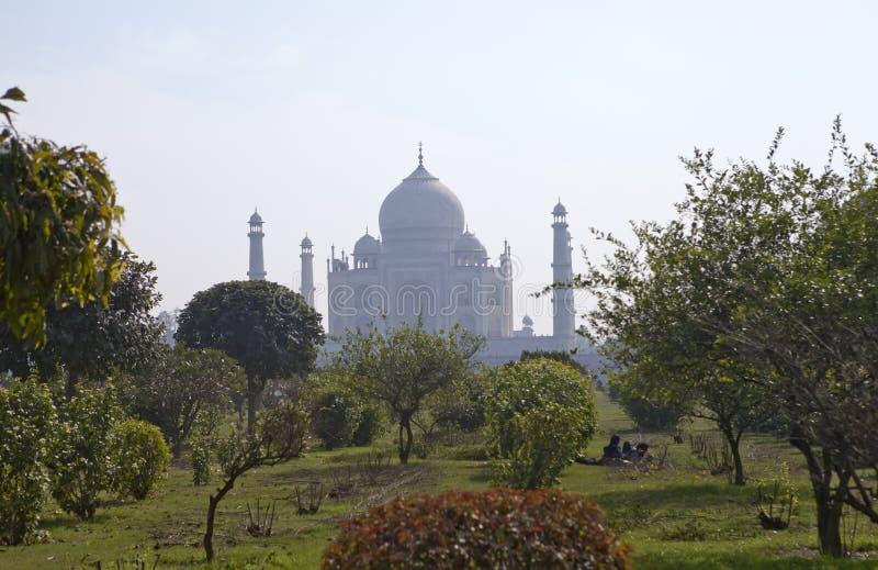 Taj Mahal w Agra, Uttar Pradesh, India Patrzeje w ranek mgiełce przez ogródu na opposite brzeg rzeki zdjęcia stock
