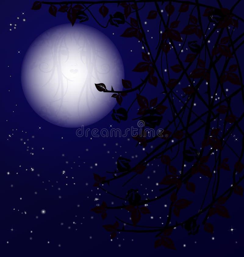 tajemnicy noc ilustracji