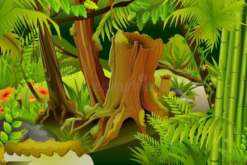 Tajemnicza dżungla ilustracja wektor