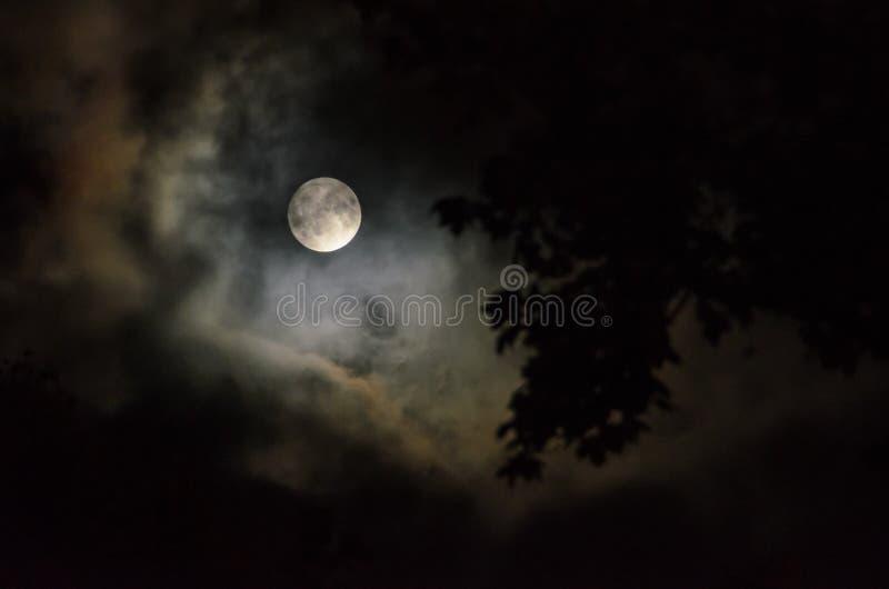 Tajemnicza księżyc zdjęcia royalty free