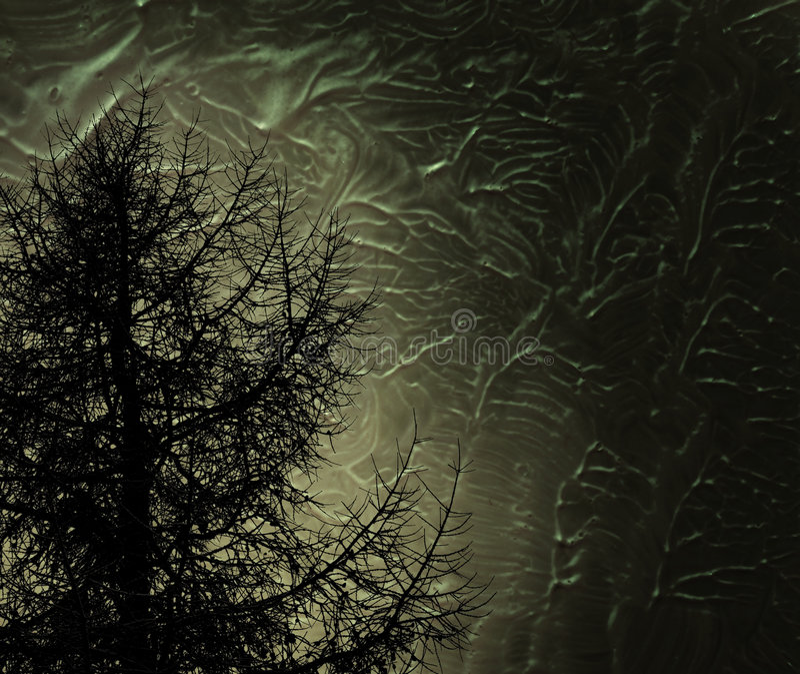 Tajemniczy drzewo royalty ilustracja