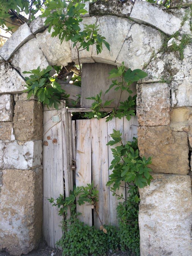 Tajemniczy drzwi obraz stock