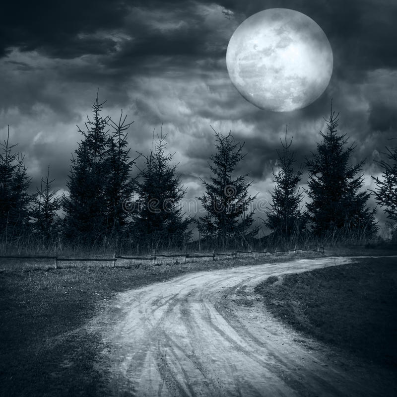 Tajemniczy las pod dramatycznym chmurnym niebem przy księżyc w pełni nocą zdjęcia stock