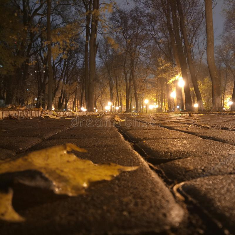 Tajemniczy park, Kijów zdjęcia stock