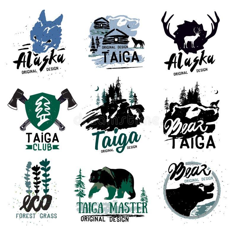 Tajga loga znak Lasowy logotyp Niedźwiadkowi tajga emblematy Rocznika Campingowy logo ilustracja wektor