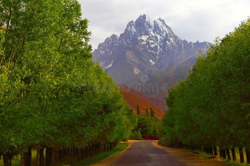 tajikistan Camino de Pamir Abra el camino fotos de archivo