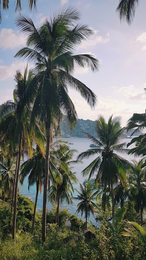 Tajlandia, Ko Tao punkt obserwacyjny, krajobraz, punkt widzenia, Chalok plaża zdjęcie royalty free