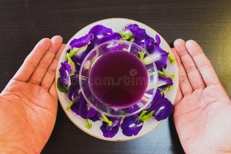 Tajlandia napoju Chan świeży zdrowy ziołowy sok z cytryna soku motyliego grochu kwiatem zdjęcie stock