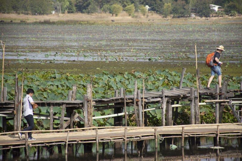 Tajlandzcy ludzie i obcokrajowów podróżnicy podróżują i chodzący wizytę na Kae tamy drewna moście długo przy Maha Sarakham, Tajla fotografia royalty free