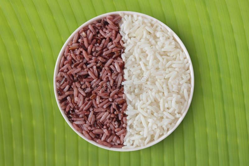 Tajlandzka riceberry żywność organiczna i Tajlandzcy jaśminowi ryż zdjęcia royalty free