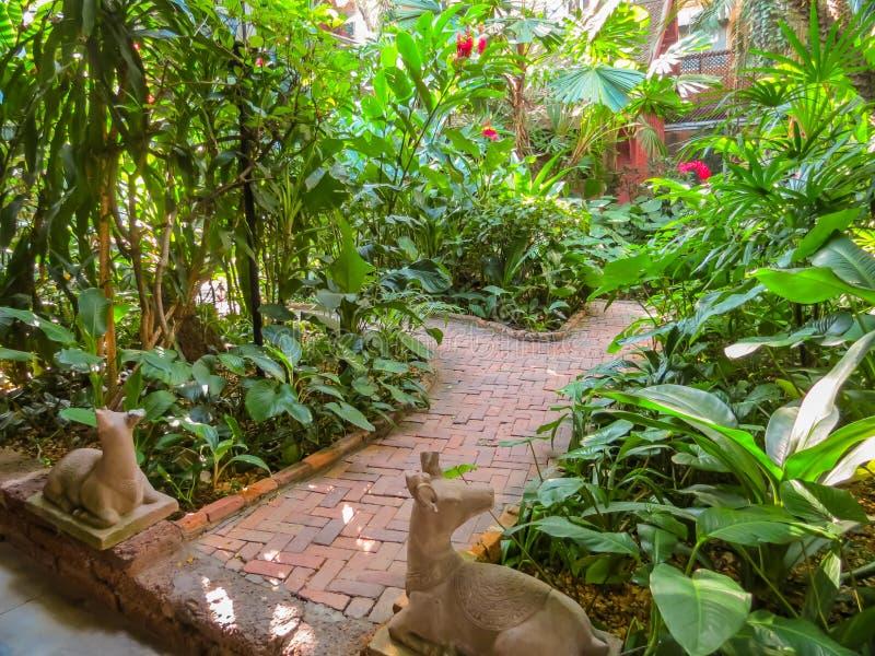 Tajlandzki dom i tropikalny ogród fotografia royalty free