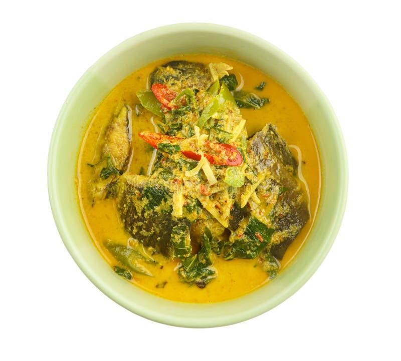 Tajlandzki jedzenie - curry z suma i drzewa basilem zdjęcie royalty free