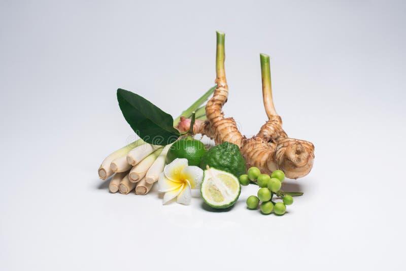 Tajlandzki jedzenie, lemongrass, lemongrass obraz royalty free