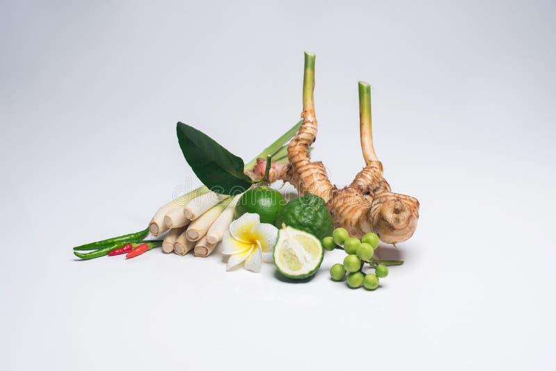 Tajlandzki jedzenie, lemongrass, lemongrass obrazy royalty free