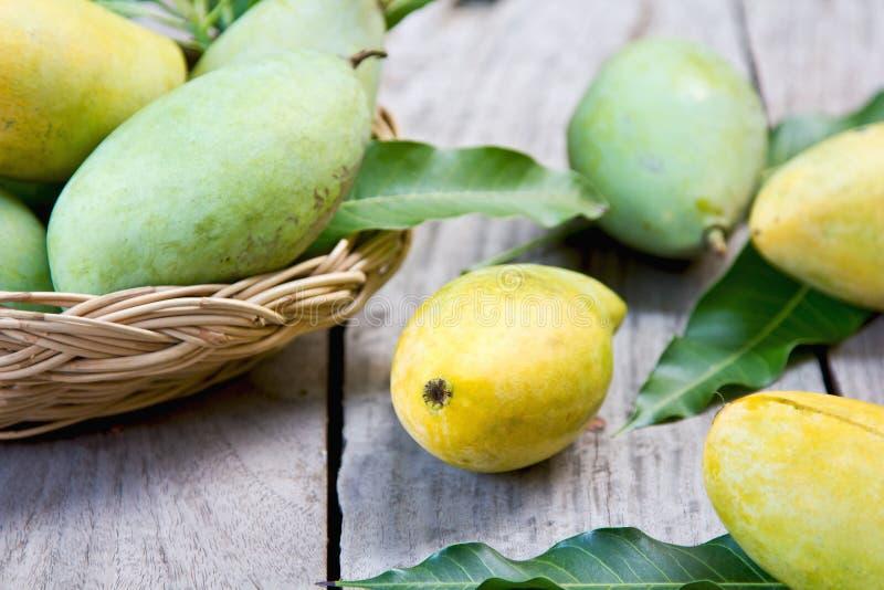 Tajlandzki mango obraz stock