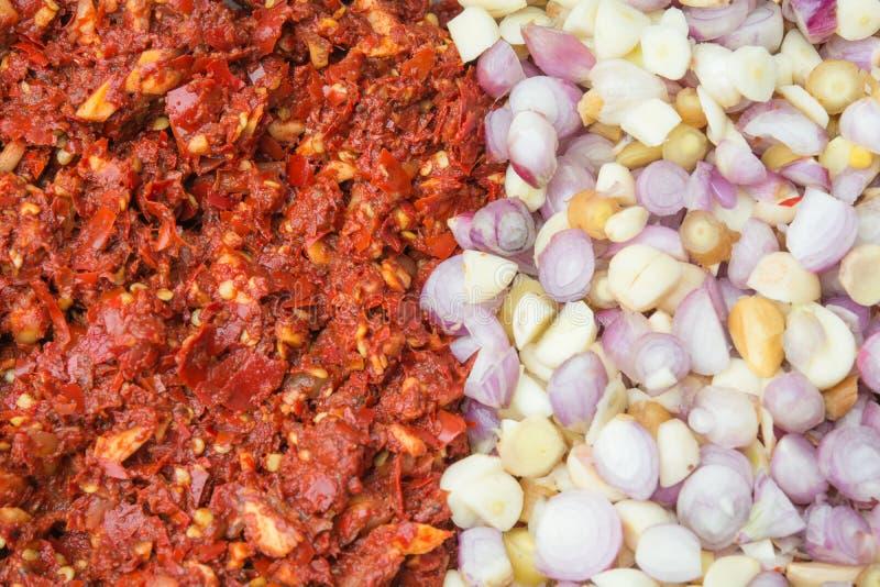 Tajlandzkiego curry'ego karmowy Korzenny, Chili, cebula i czosnek, zdjęcia royalty free