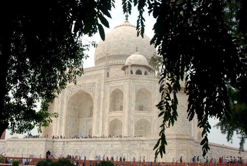Tajmahl Agar Uttar Pradeh India obrazy royalty free
