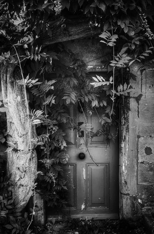 Tajny drzwi obraz royalty free