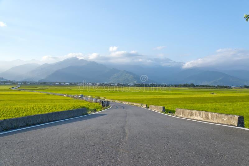 Tajwańska wiejska sceneria zdjęcie royalty free