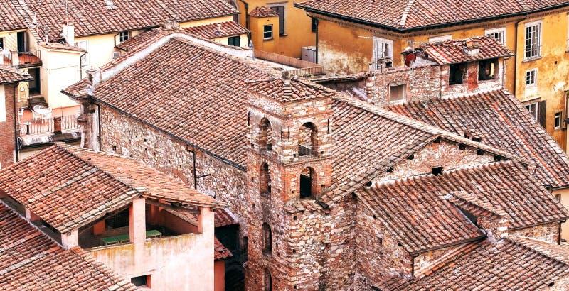 Tak av Lucca, stad som lokaliseras i Tuscany, Italien royaltyfri fotografi