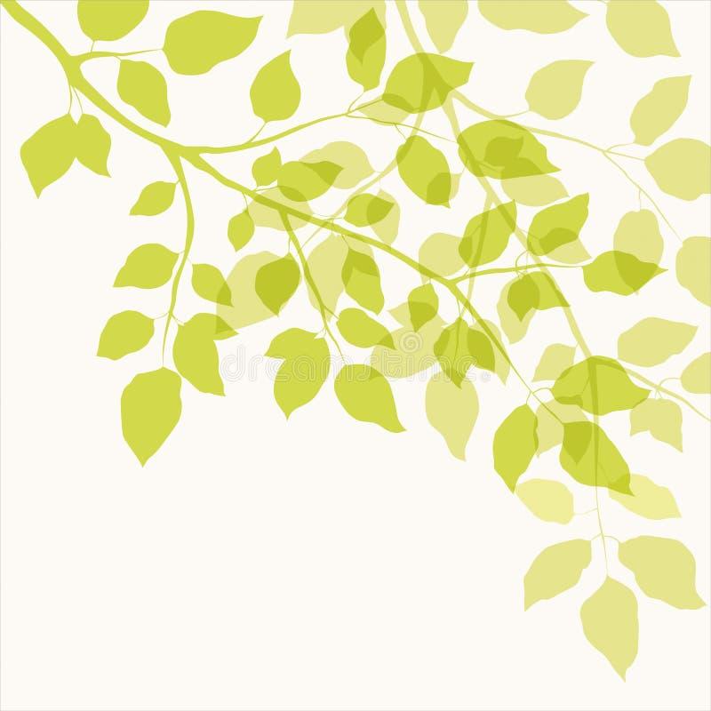 Download Tak met groene bladeren vector illustratie. Illustratie bestaande uit milieu - 29506331