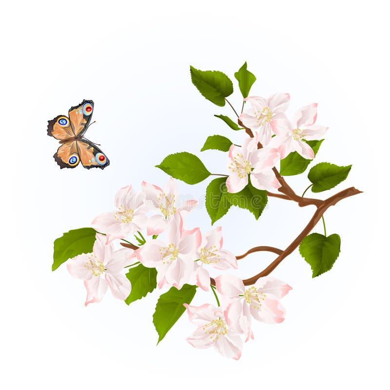 Tak van appelboom met bloemen en de aard van de vlinderwaterverf uitstekende editable illustratie als achtergrond stock illustratie