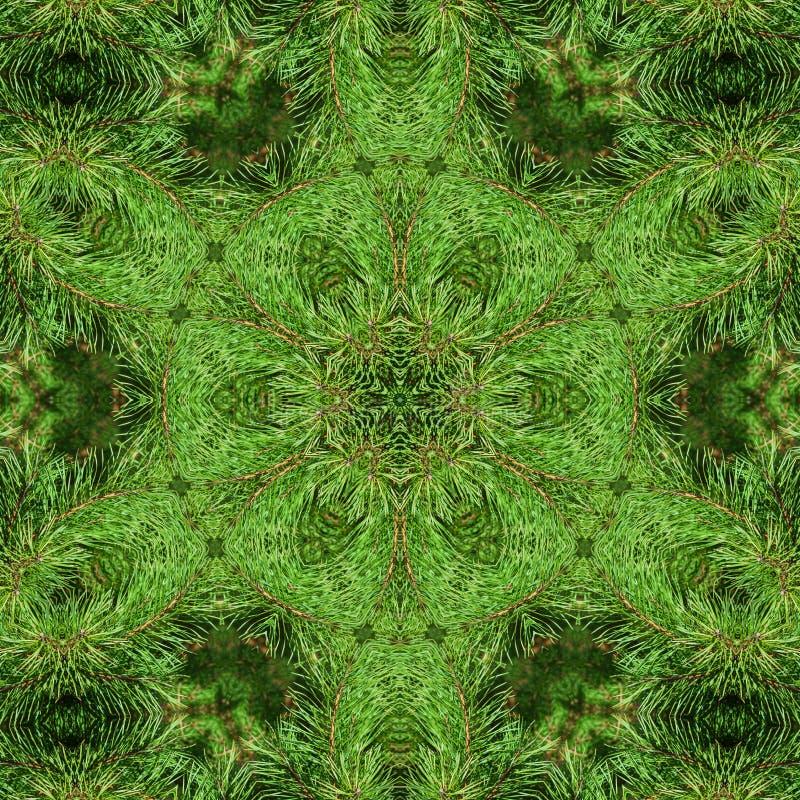 Tak van groene pluizige pijnboom royalty-vrije illustratie