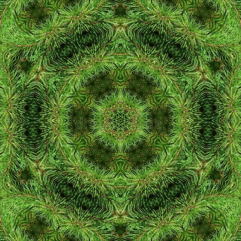 Tak van groene pluizige pijnboom vector illustratie