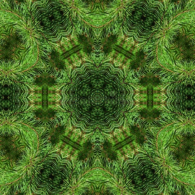 Tak van groene pluizige pijnboom stock illustratie