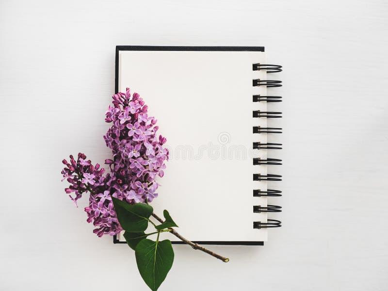 Tak van heldere lilac en blanco pagina van sketchbook royalty-vrije stock fotografie
