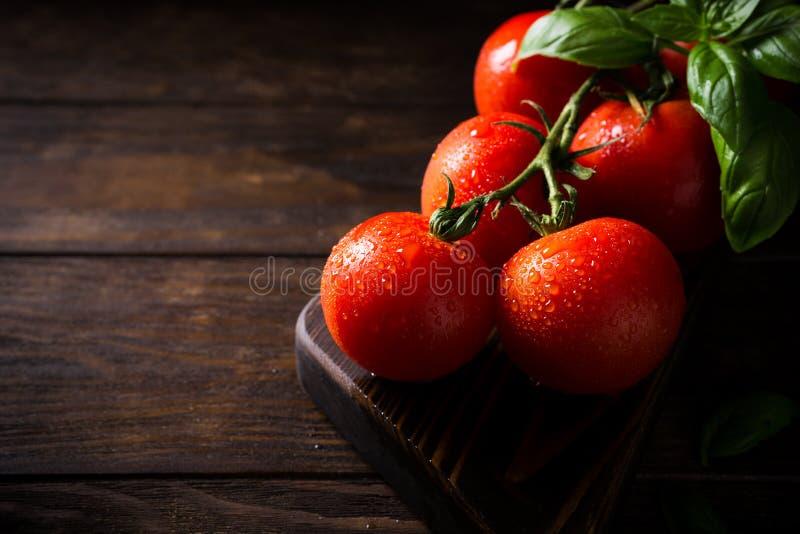 Tak van rijpe natuurlijke tomaten en basilicumbladeren stock afbeelding