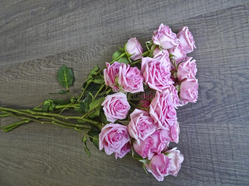 Tak van roze rozen op een achtergrond van donker hout stock foto