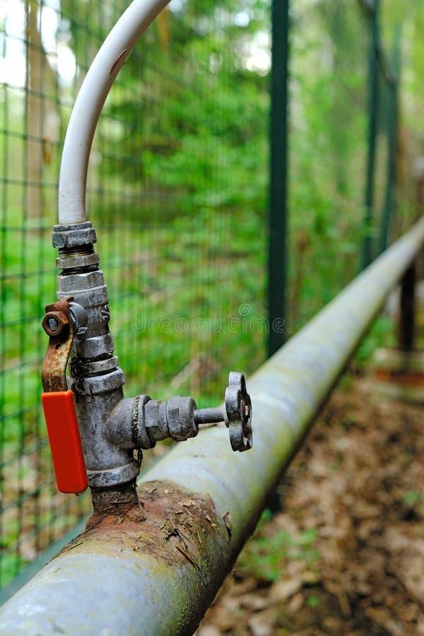 tak van waterpijp met tapkraan van hoofdbuis aan lokale tuin, concept slijtage van pijpen royalty-vrije stock afbeeldingen