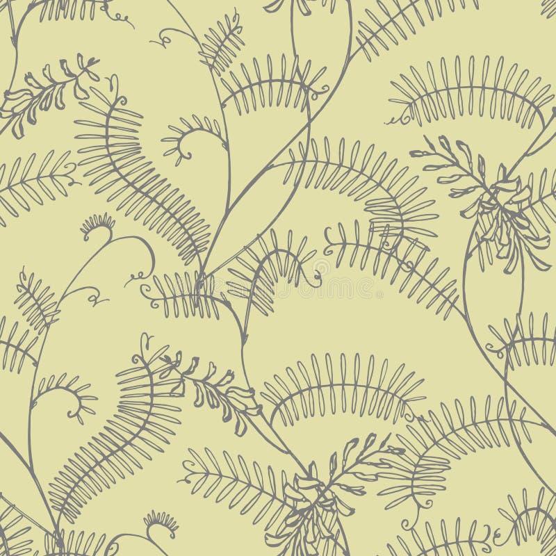 Tak van wilde installatievicia cracca Tufted Wikke of Vicia cracca, wijnoogst gegraveerde illustratie Botanische illustratie royalty-vrije stock foto