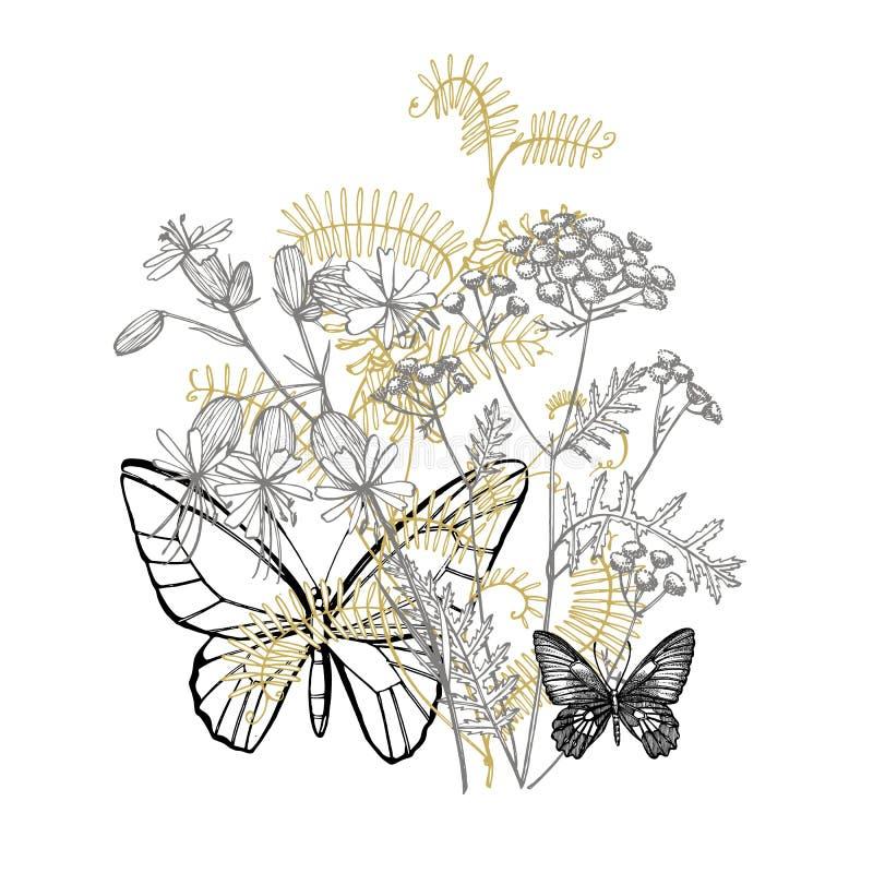 Tak van wilde installatievicia cracca Tufted Wikke of Vicia cracca, wijnoogst gegraveerde illustratie Getrokken boeket van hand royalty-vrije stock afbeeldingen