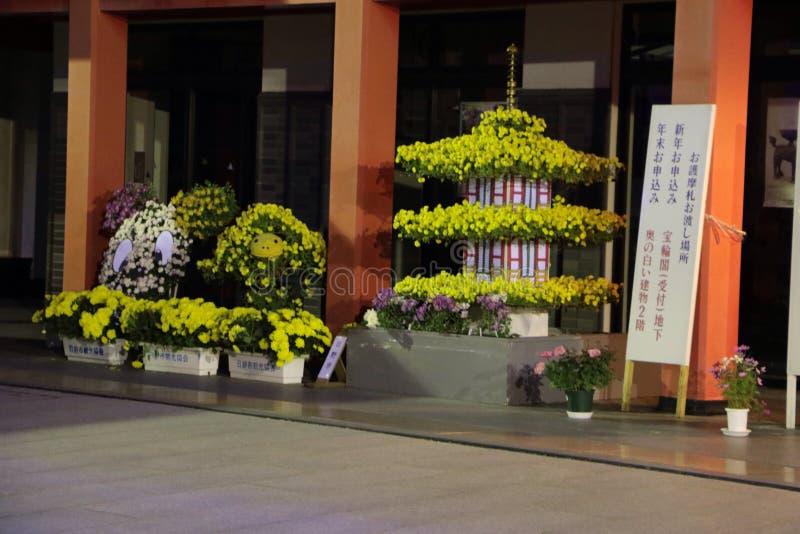 Takahadafudo στοκ εικόνες
