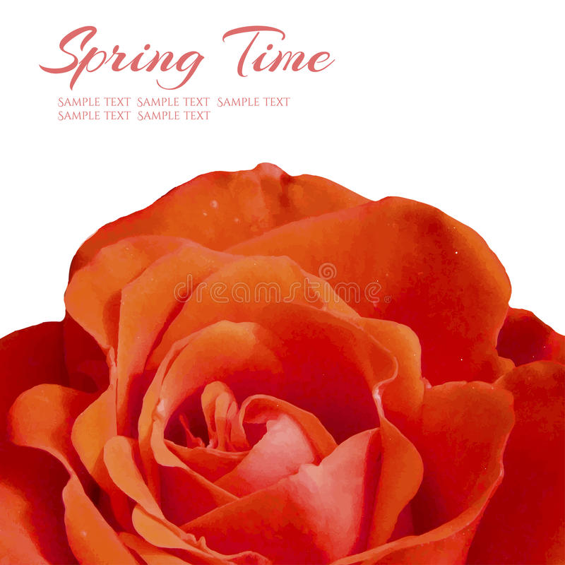 Take a flower on floral background. Vector illustration royalty free illustration