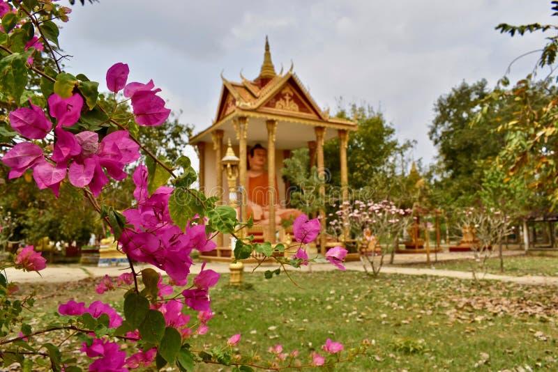 Hidden temple close to Battambang Cambodia royalty free stock images