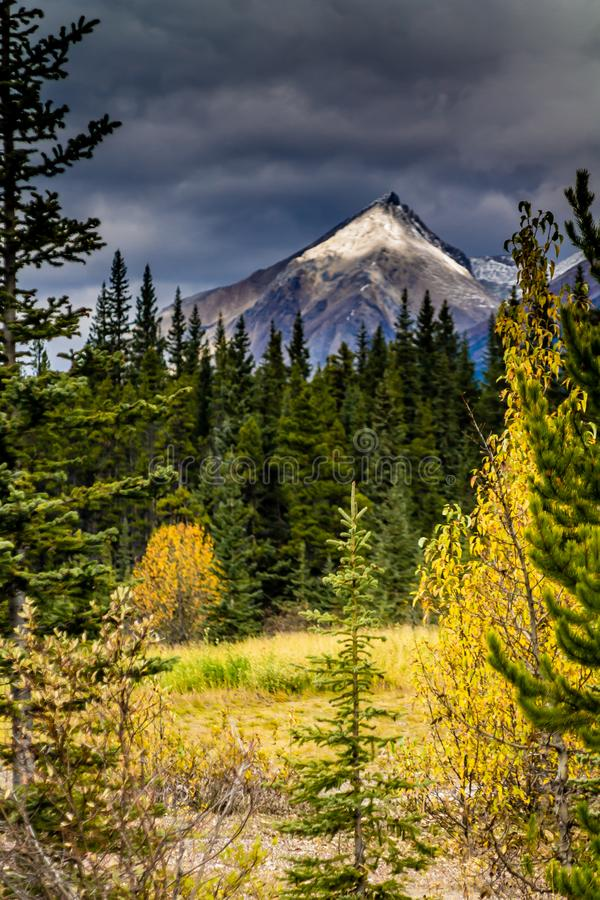 Taken from along the Ice Fields Parkwayl Banff National Park, Alberta, Canada stock images