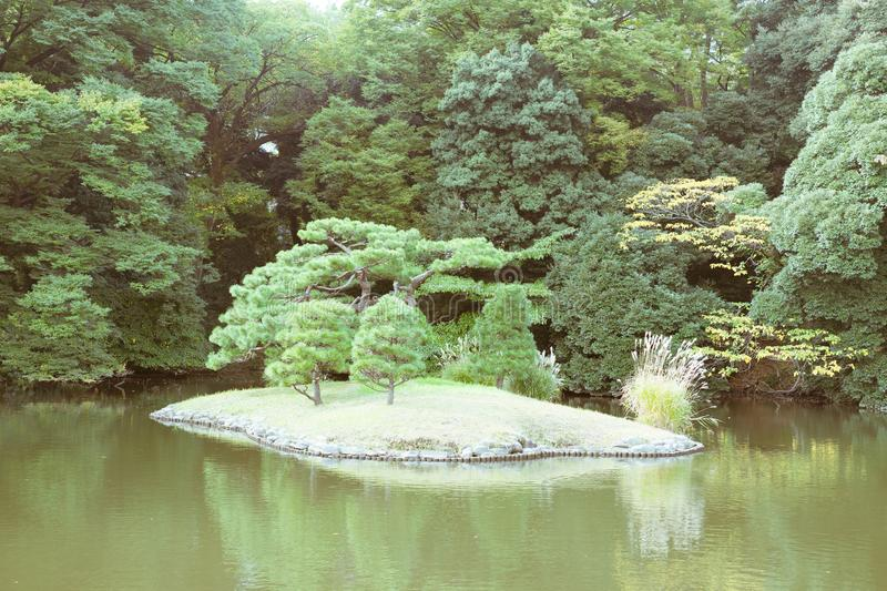 View of a Japanese garden with a pond in Tokyo, Japan royalty free stock image
