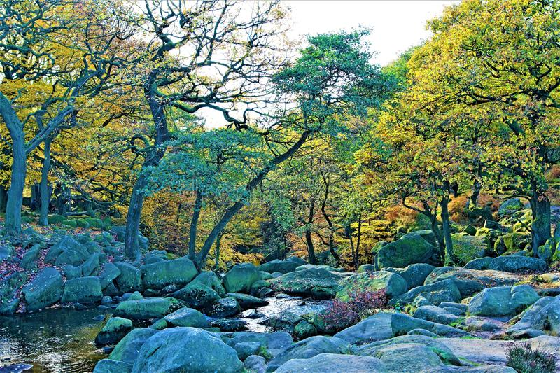Glistening waters in Burbage Brook, near Padley Gorge, Grindleford, East Midlands. Taken to capture the rich autumnal colours, surrounding the glistening waters royalty free stock image