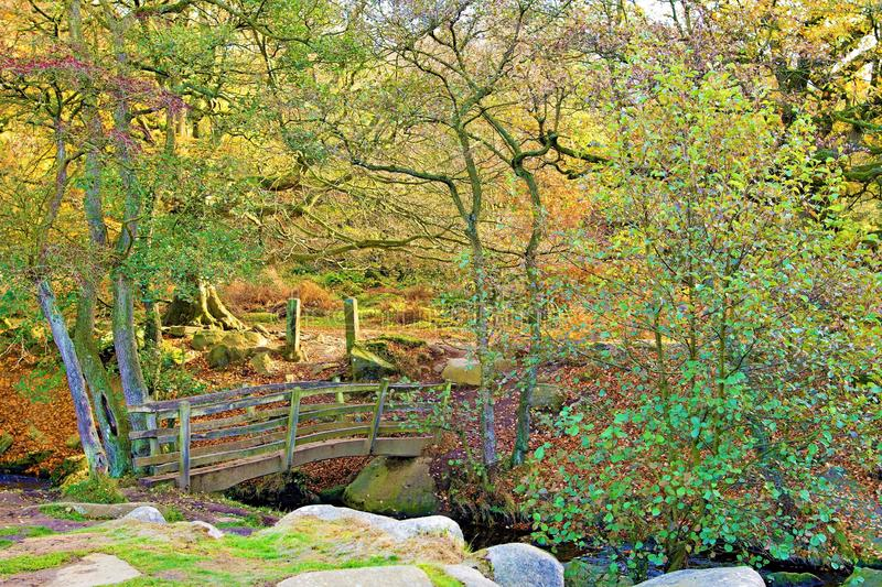 Bridge view in Padley Gorge, Grindleford, East Midlands. Taken to capture the rich autumnal colours surrounding mossy rocks and a wooden bridge, in Padley Gorge stock images