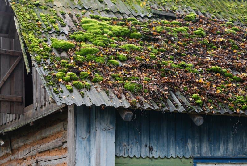 Taket av ett lantligt hus som täckas med mossa arkivfoto