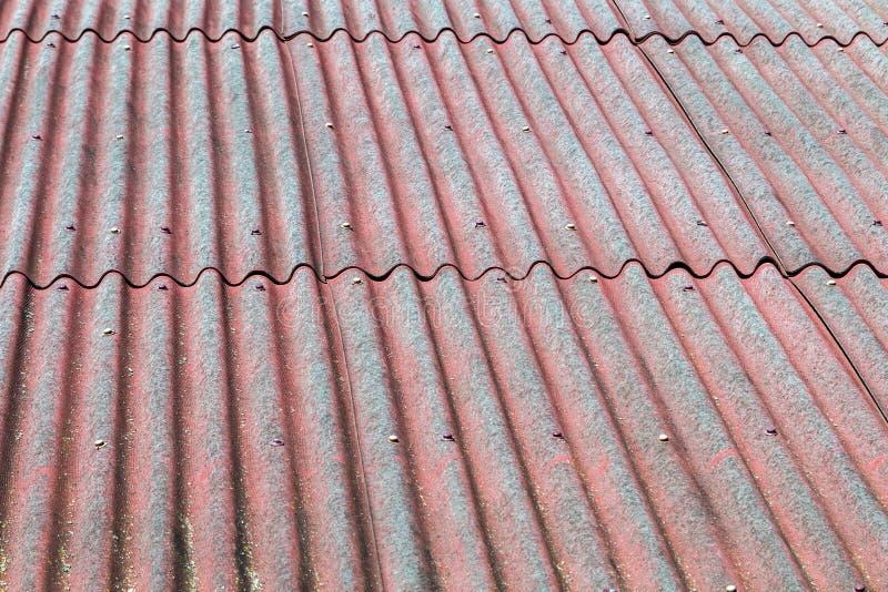 Taket täckas med tegelplattabakgrund fotografering för bildbyråer