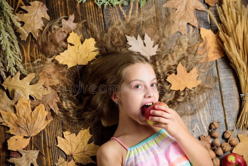 Taking a big bite. Cute girl child with ripe autumn crops. Little girl enjoy eating apples. Small girl likes the taste stock photo