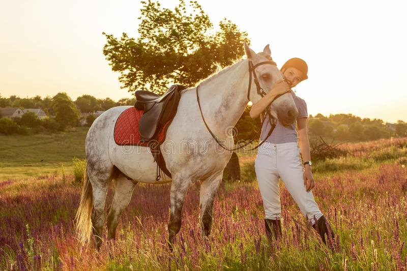 Jockey young girl petting and hugging white horse in evening sunset. Sun flare. Taking care of animals, love and friendship concept. Jockey young girl petting royalty free stock photo