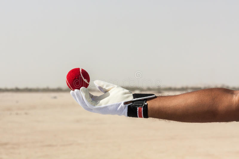 Taking the catch of red ball with hands. Wearing white gloves in open sandy ground royalty free stock images