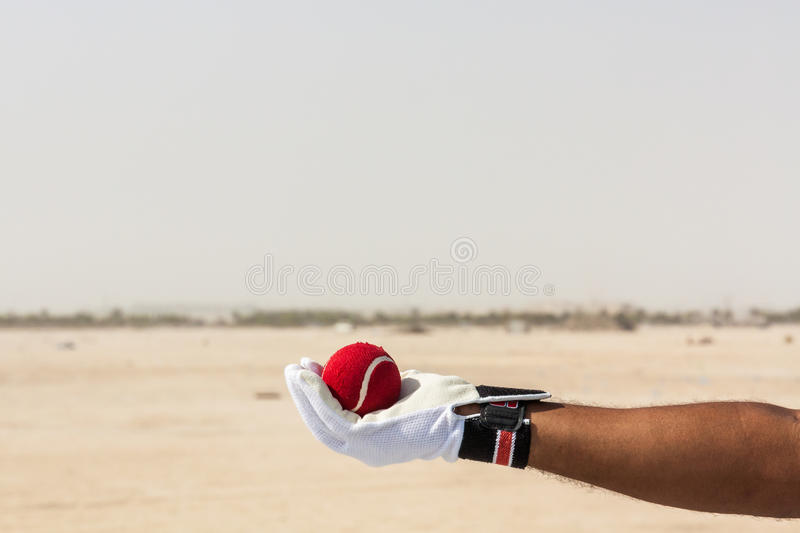 Taking the catch of red ball with hands. Wearing white gloves in open sandy ground stock photo