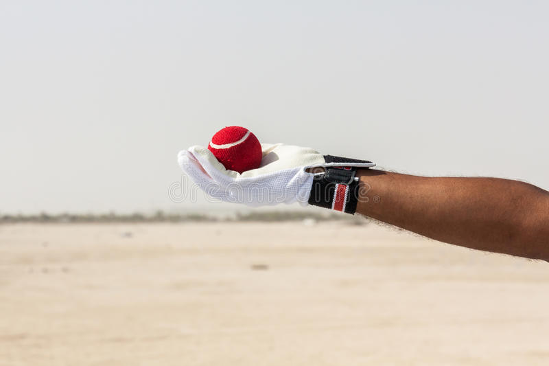 Taking the catch of red ball with hands. Wearing white gloves in open sandy ground royalty free stock photos