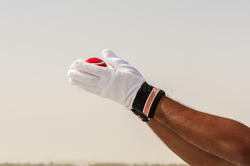 Taking the catch of red ball with hands. Wearing white gloves in open sandy ground stock image